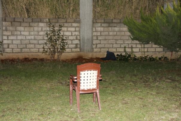 http://martabogdanska.com/files/gimgs/th-72_Bogdanska_Voodoo hotel 08s.jpg