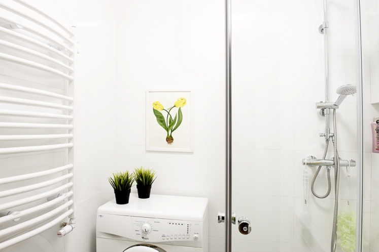 http://martabogdanska.com/files/gimgs/th-33_bathroom 5.jpg