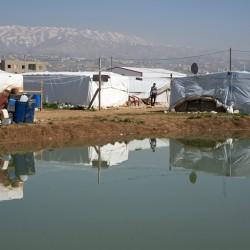 http://martabogdanska.com/files/gimgs/th-35_refugees36.jpg